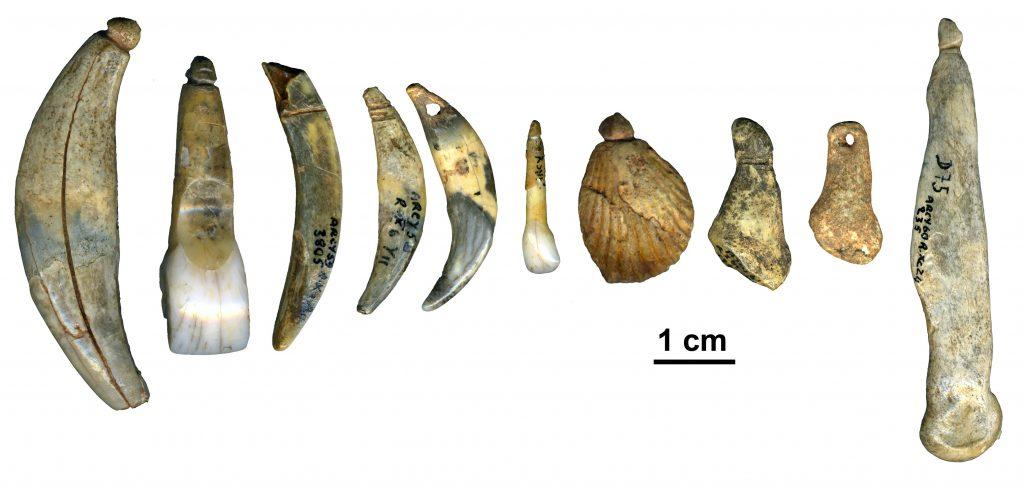 Serie de dents et coquilles percés ou incisés