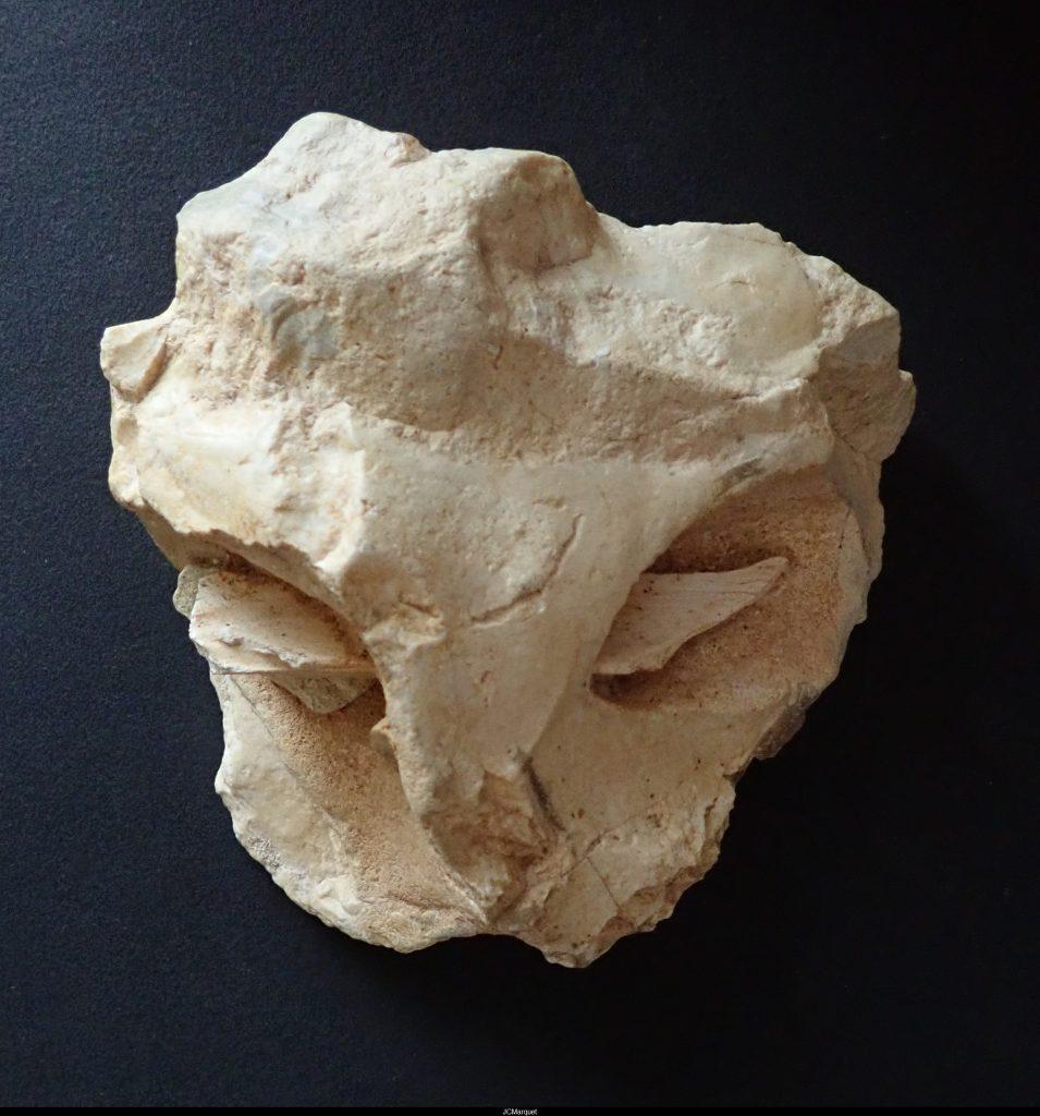 Le masque de la Roche-Cotard