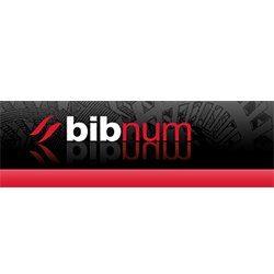 Logo du site BibNum Education