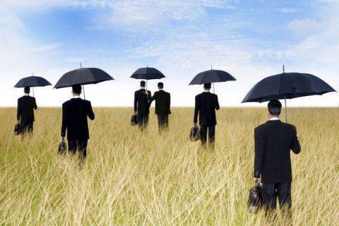 Groupe de businessmen marchant dans un champ avec des parapluies
