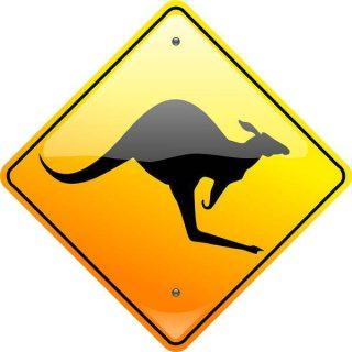 Attention au passage de kangourous