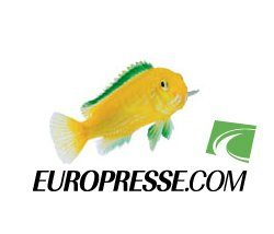 logo de la base Europresse