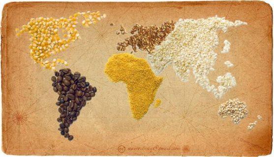 Planisphère réalisé avec des céréales et des épices