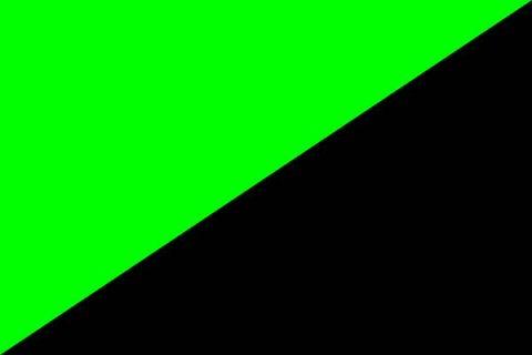 Drapeau noir et vert de l'anarcho-primitivisme