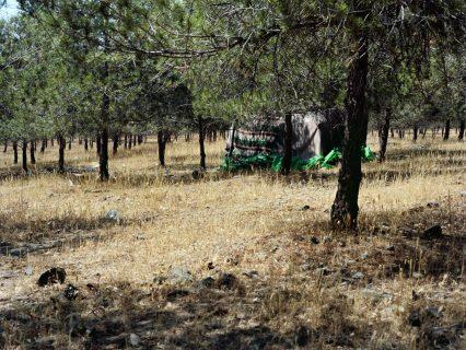 Campement dans la région d'Oujda