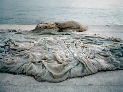 Filet sur le sable