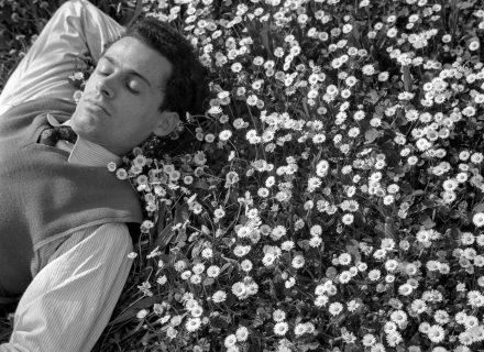 portrait d'un jeune homme allongé dans un champ de fleurs