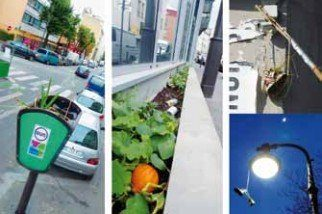 exemples d'actions de la Guerilla Gardening France
