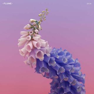 Pochette de l'album Skin du DJ Flume