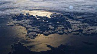 Le monde des océans : enjeux méconnus