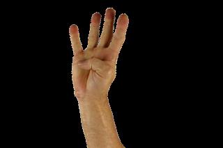 Photographie d'une main ouverte avec le pouce replié
