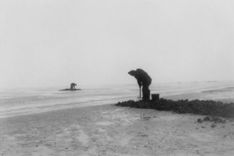 Hommes au travail sur la Waddenzee, zone cotière