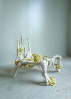 chaise végétale avec champignons