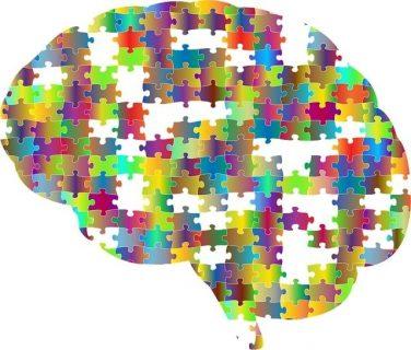 des pièces de puzzle forment un cerveau