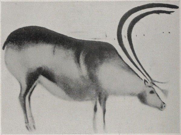 peinture publiées dans Cahiers d'art, 1926
