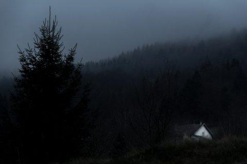 Dans une pénombre brumeuse de montagne, l'ombre d'un sapin se détache au premier plan. Sur la droite, une petite maison est en partie dissimulée par un talus. Au fond de l'image, la montagne est recouverte d'une forêt dense de sapins.