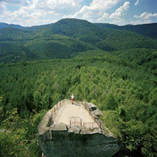 Un vestige de forteresse marquant une frontière dans une forêt alsacienne