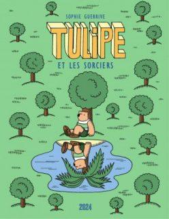 Couverture de l'album Tulipe et les sorciers