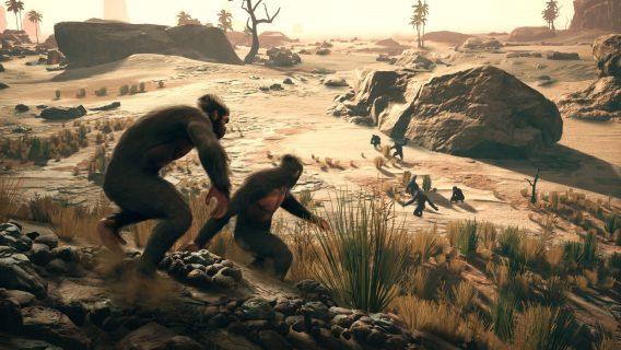 Des grands singes dans la savane.