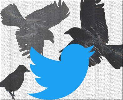 l'oiseau bleu de Twitter aux côtés de corbeaux