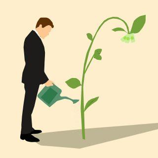 Un homme en costume arrose une plante sur laquelle pousse des billets