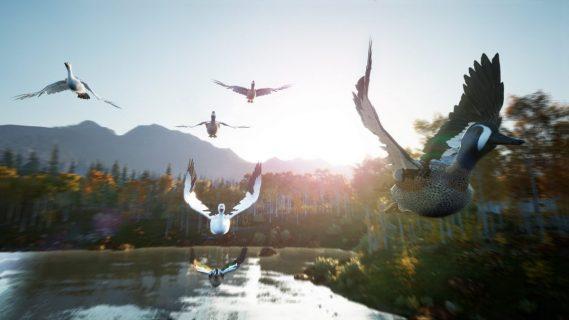 vol d'oie dans un jeu