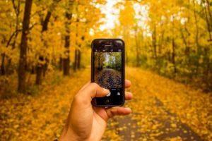 Peut-on atteindre la sobriété numérique ?