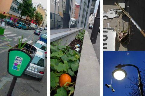 Triptyque : Des plantes dans un poteau signalant un arrêt de bus, des plantes le long d'une façade d'immeuble ou dans une paire de chaussures suspendues à un réverbère.