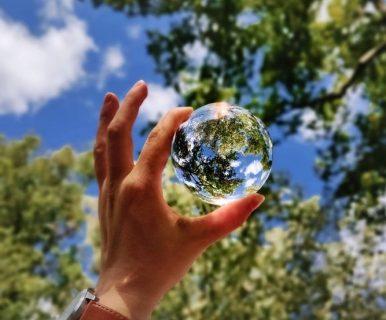 Main tenant une boule en verre dans laquelle les feuilles d'un arbre se reflètent