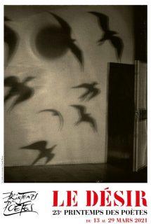 Affiche avec des oiseaux qui s'envolent